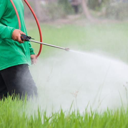 Telamon Corporation - Preserva la seguridad de los trabajadores agrícolas en el campo